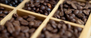 Roasted-Coffee-Beans_large