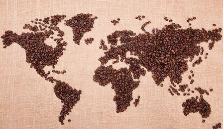 Buying Guide: Tips for Buying the Best Coffee Beans